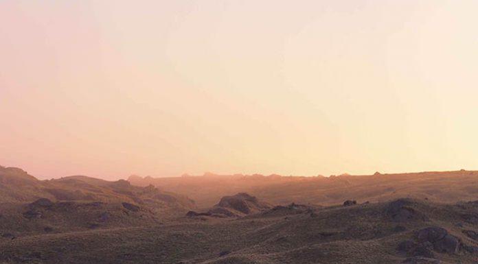 El cutín tiktik fue registrado dentro del rango altitudinal de 3.000 a 3.400 m en pajonales y matorrales de páramo.